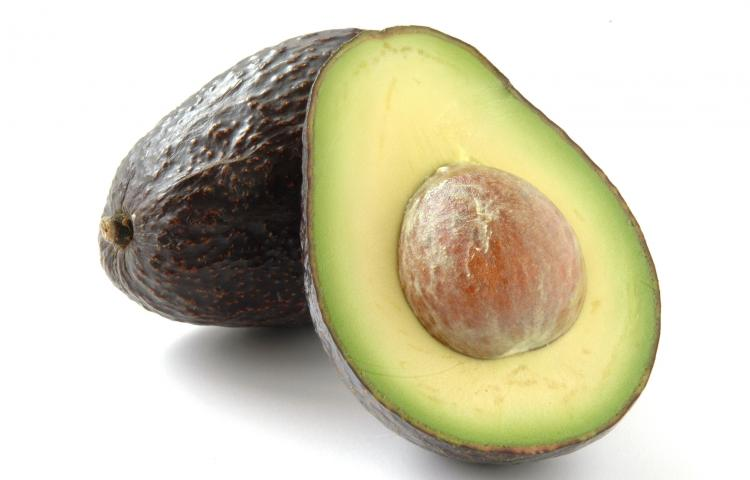 5009764 - avocado cut image